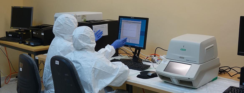 مباشرة مستشفى كاريتاس للأطفال بعمل فحوصات فيروس كورونا كوفيد 19